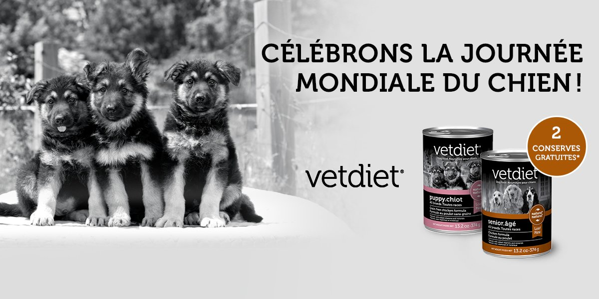 Bonne journée internationale du chien! https://t.co/ZMqqKwVLXn #NationalDogDay #mondou #vetdiet https://t.co/WtaxwaVuHr