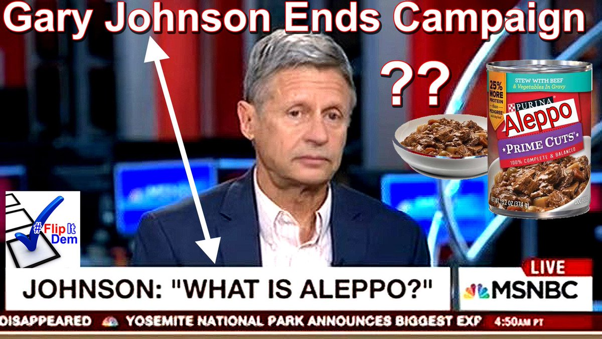 Image result for Gary Johnson is an idiot