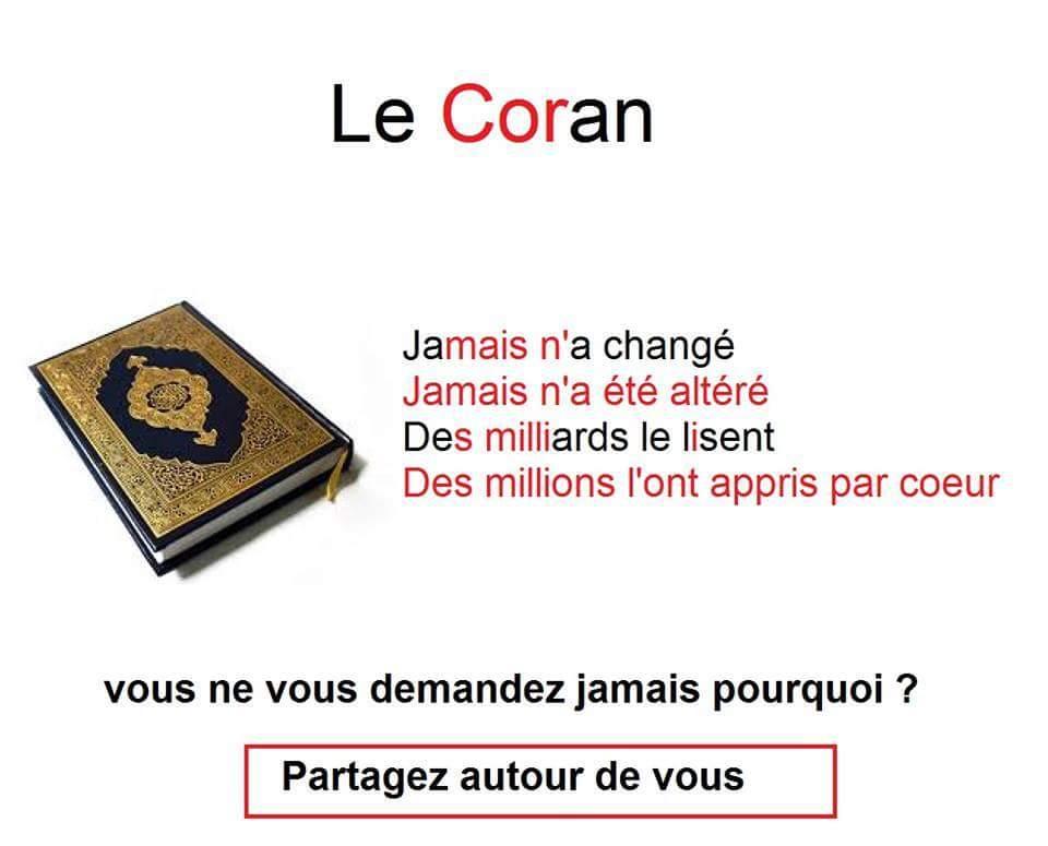 Extrêmement Citation Islamique (@Citation_Islam_) | Twitter OL52