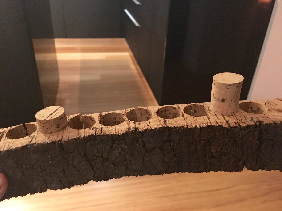 Fun fact for next time you pop a cork - a cork tree provides cork 16 times in 200yr life = 65,000 corks #winetrivia https://t.co/EFaZELSLAc