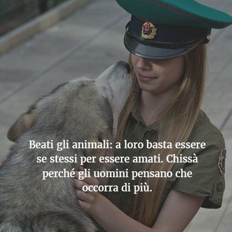 Salute E Benessere Di Twitter Beati Gli Animali A Loro Basta Essere Se Stessi Per Essere Amati Chissa Perche