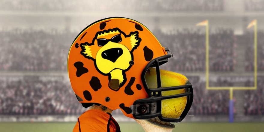 Chester Cheetah On Twitter At Panthers It Seems Like The People Have