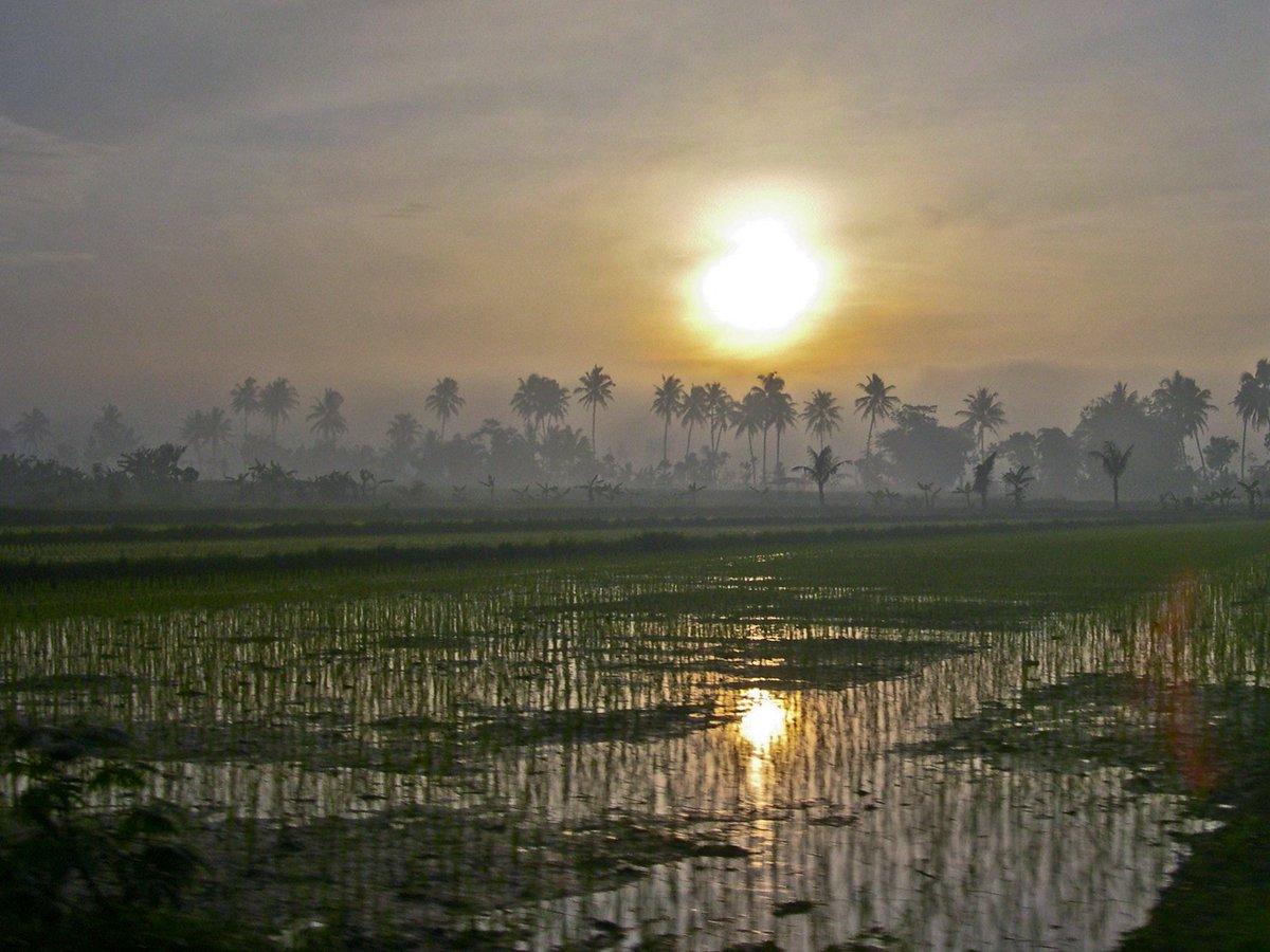 Matahari Terbit di Yogyakarta - Indonesia Sumber: flickr.com/photos/maggi_h…