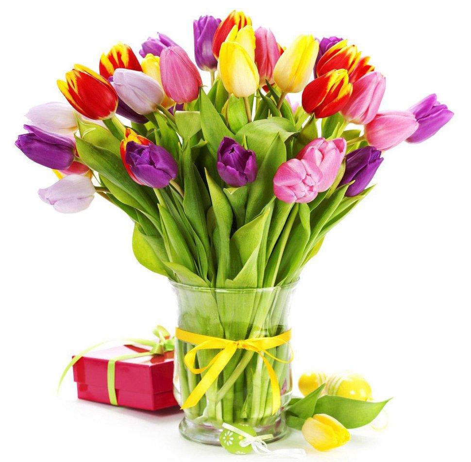 Картинки с днем рождения цветы тюльпаны