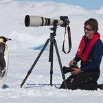 カメラがあると近寄ってくる!人やカメラに懐っこく近づいてくる皇帝ペンギンが可愛い!