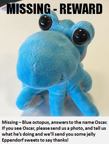 Eppendorf Uk On Twitter Our Office Octopus Oscar Is Missing Help