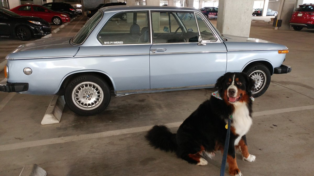 Houston Bmw Cca On Twitter Joey Posing With A Sweet Bmw2002 In