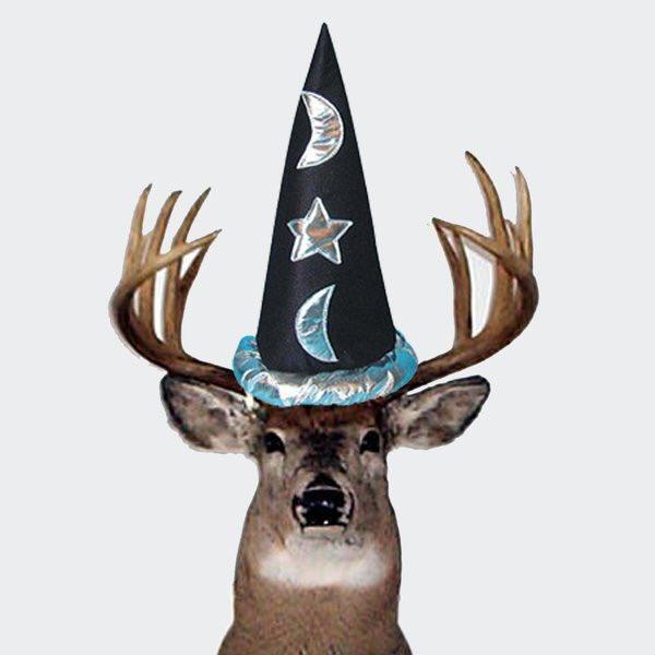 Image result for deer wizard