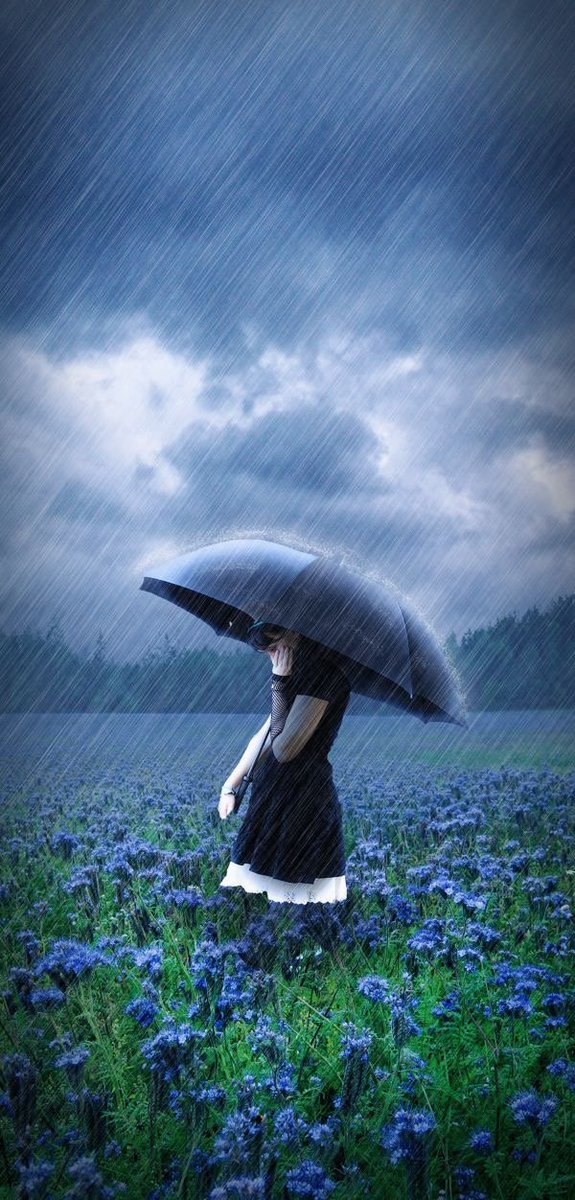 Bajo la lluvia - Página 5 CrIhmN0UsAAnwHd