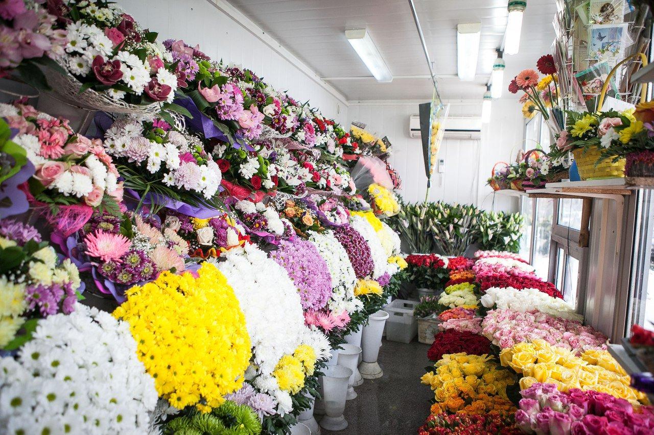 Оптовый склад цветов павелецкая