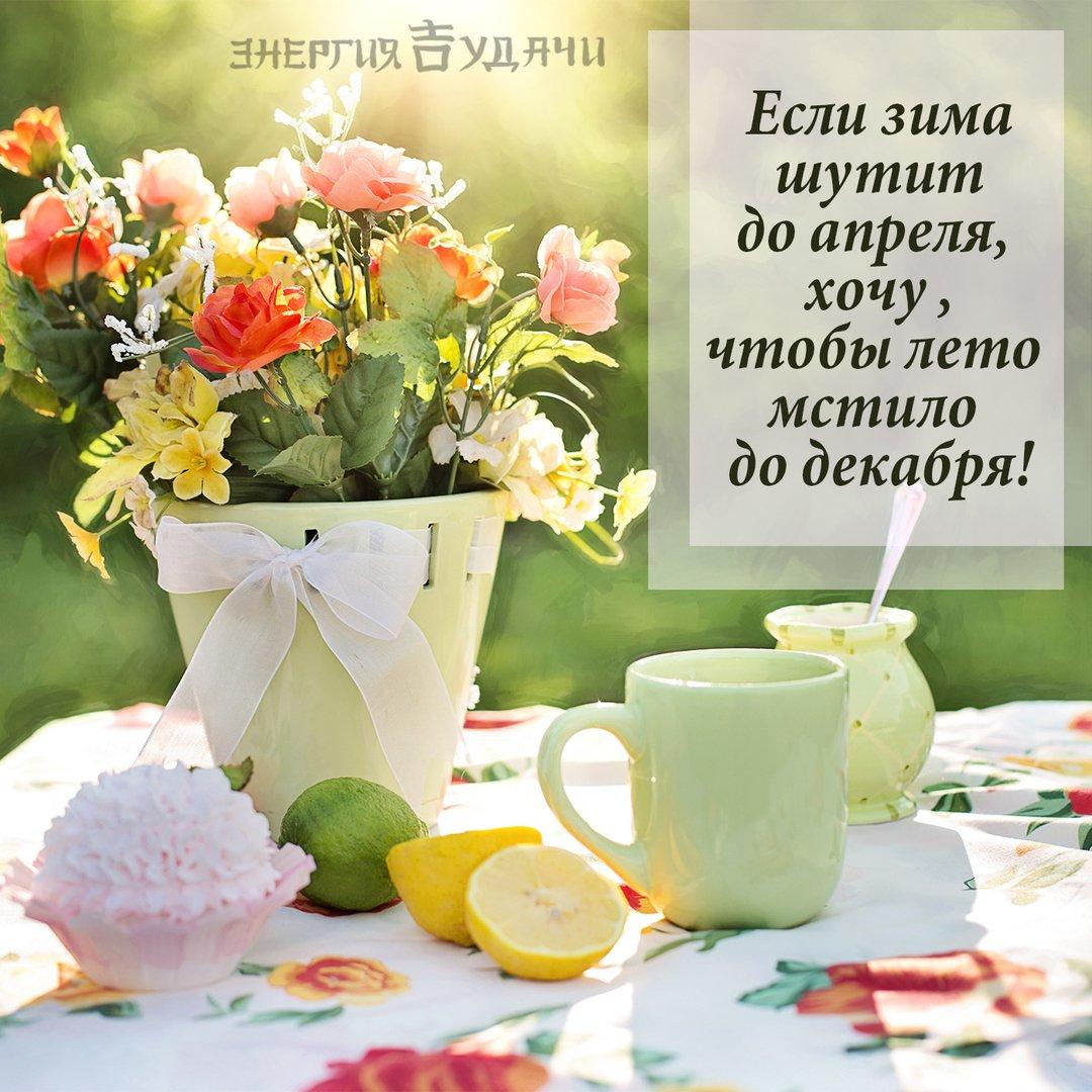 Открытки с пожеланиями доброго утра и хорошего дня летним мотивом