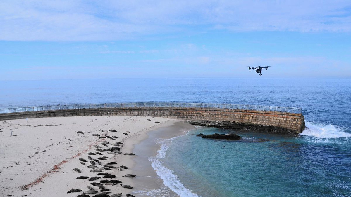 California could see new rules on flying drones in state parks
