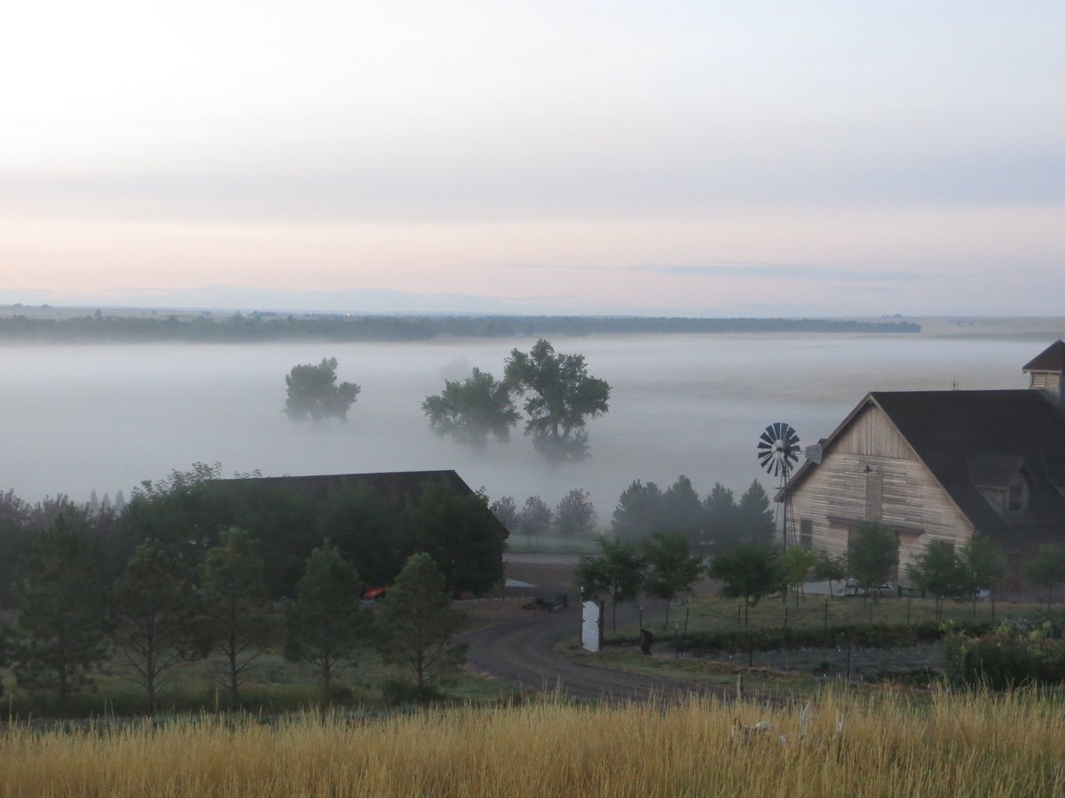 Check out that low layer of fog in Deer Trail this AM from CBS4 Wx Watcher Don Wedow. COwx 4wx
