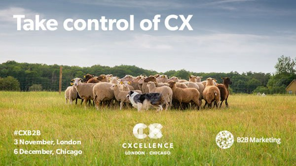 Two-thirds of CMOs are now responsible for #CX. Learn how to make yours count > https://t.co/gG2Ag9bsV1 #CXB2B https://t.co/qG8bR6OV5l