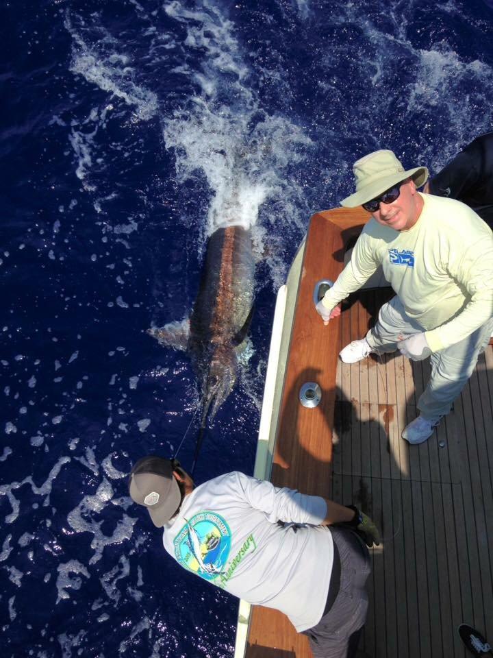 Kona, HI - Sapo released a Blue Marlin.
