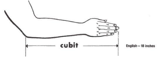 Cubits Deutsch