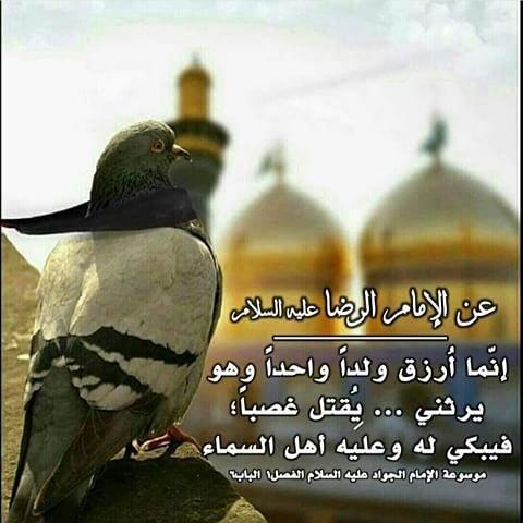 من أقوال الإمام الجواد 14