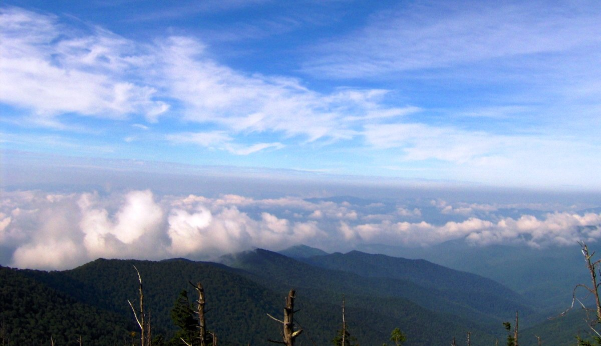 clingmans dome weather - 1200×692