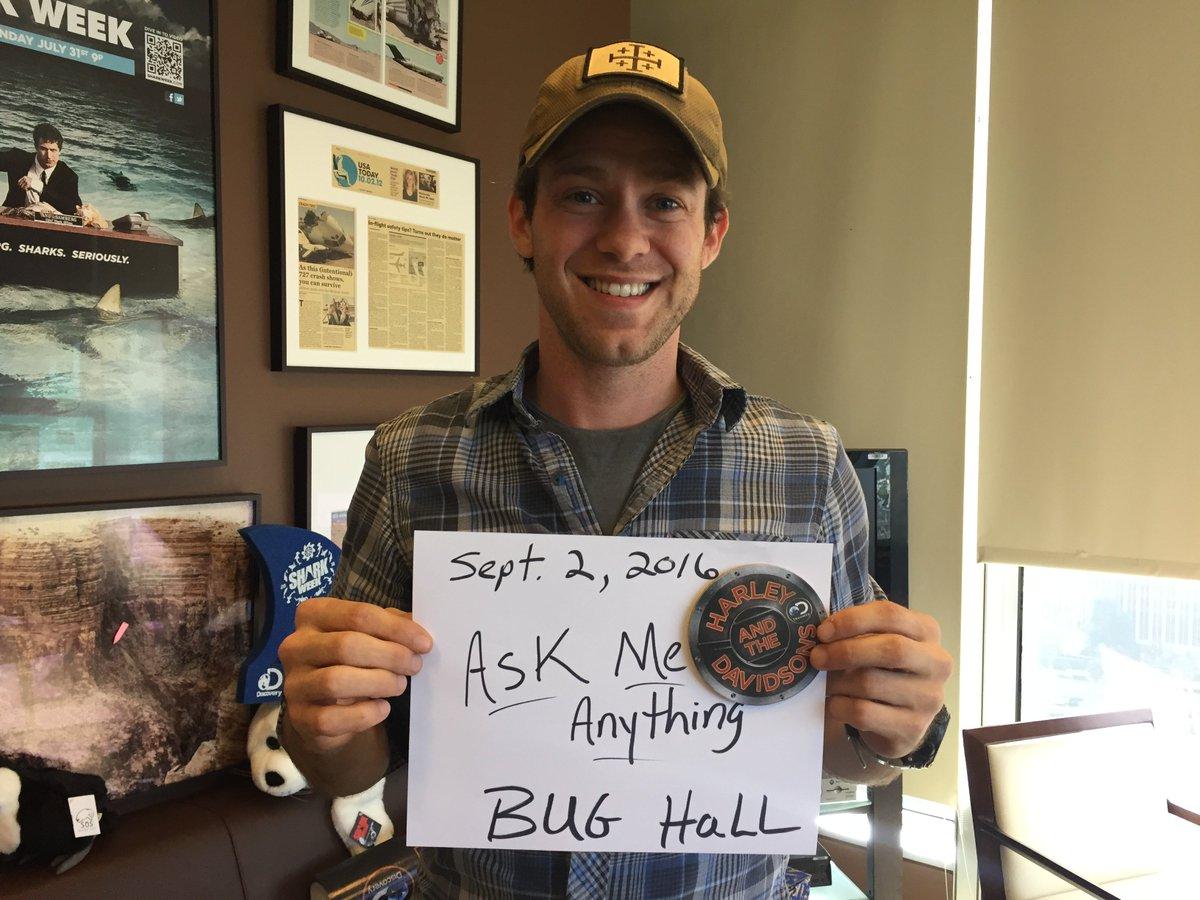 AMA Bug Hall Alfalfa Harley Davidsons | Reddit | Scoopnest