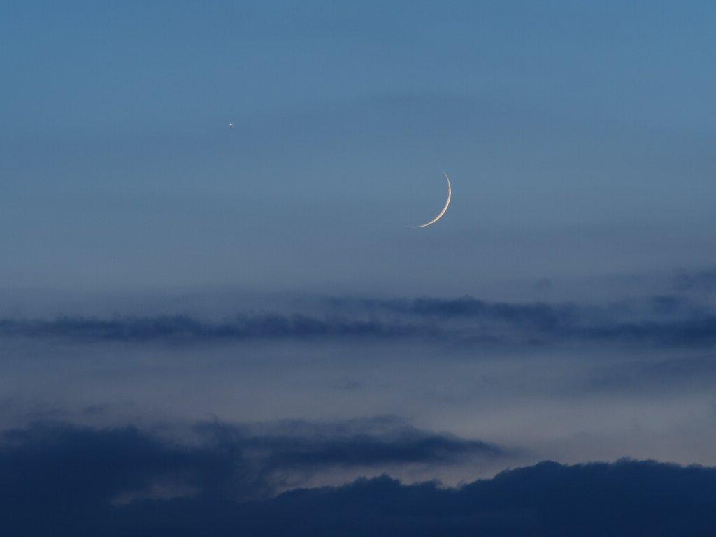 月と金星の接近(来年2月まで毎月見られます)