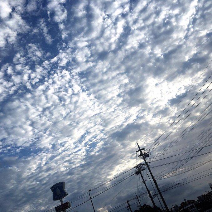 スタッフさんが空の写真撮ってたから真似して湊も撮った。 でもSNSでよくある良い感じのポエムは浮かびません。 https://t.co/buPtYtLuiA