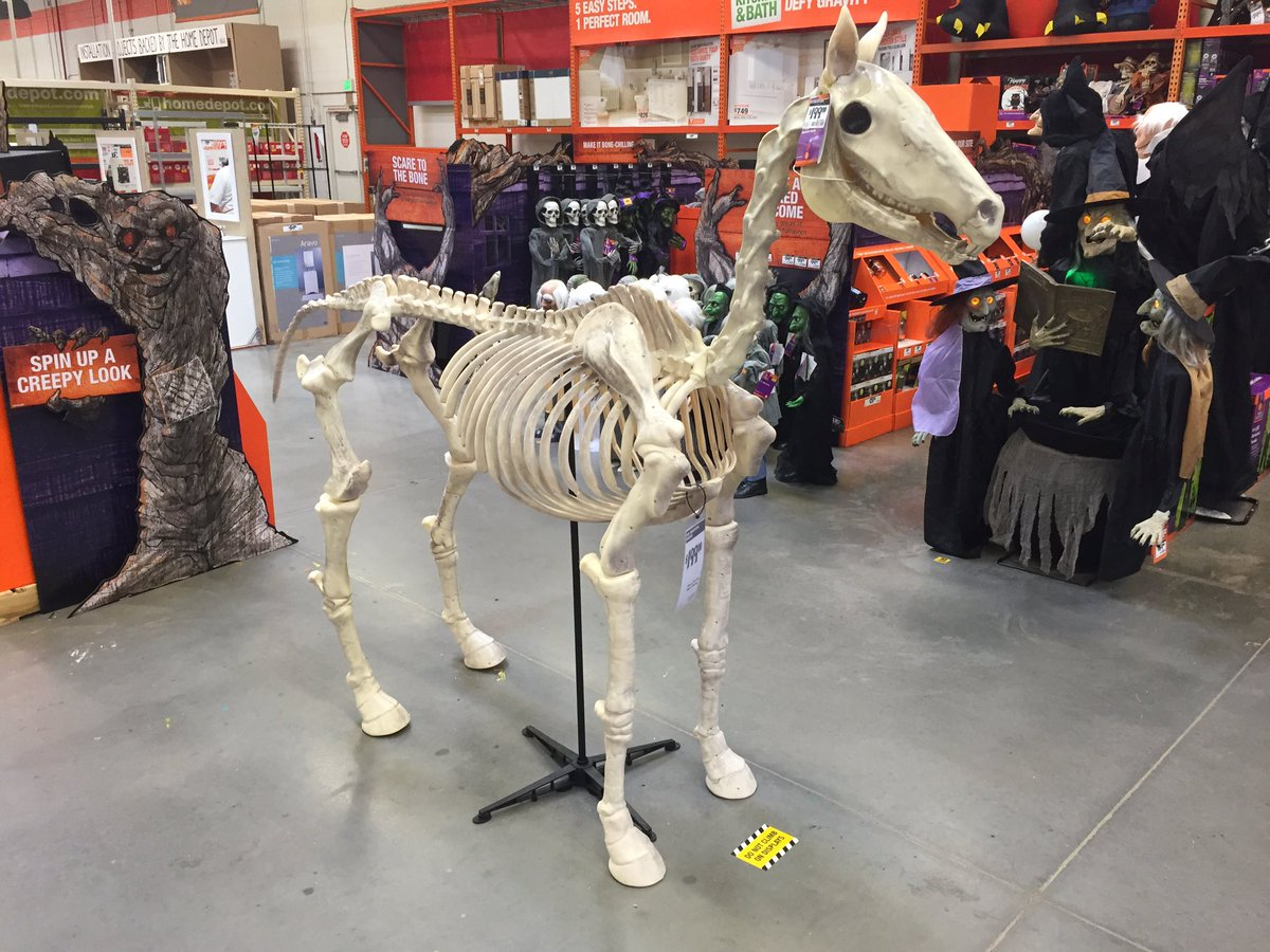 """dan daru on twitter: """"why, tell me why, you would want a skeleton of"""