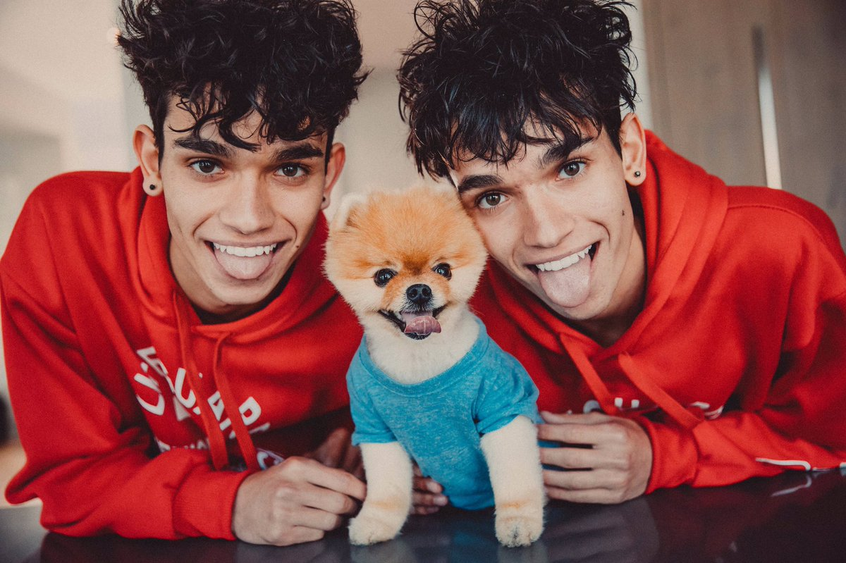 Image result for the dobre twins 2016