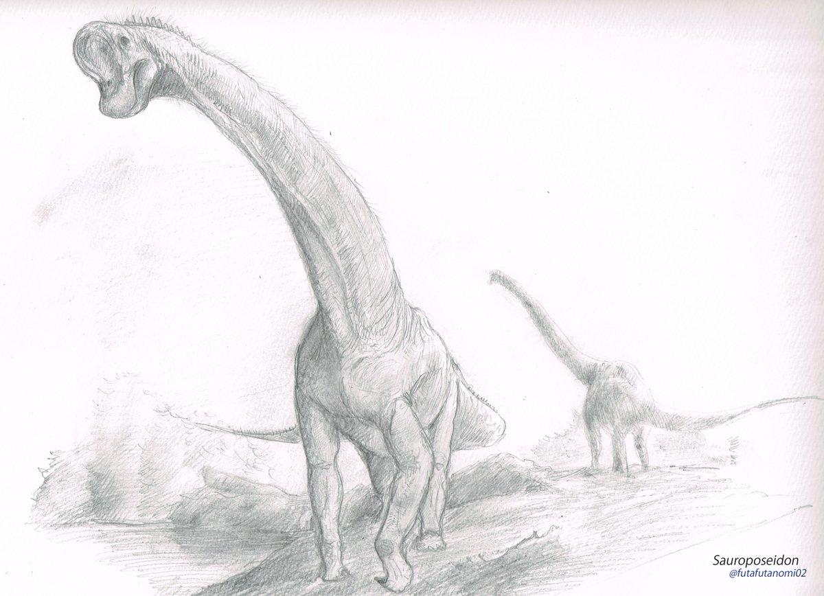 """ヒロくん 恐竜のお兄さん on Twitter: """"サウロポセイドンは現在、元パ ..."""