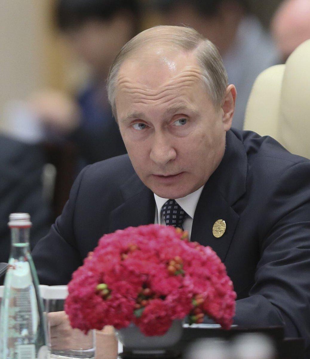 Сотрудничество будет стимулировать военную машину Путина, - украинцы Канады призвали правительство продолжить экономическую изоляцию РФ - Цензор.НЕТ 3942