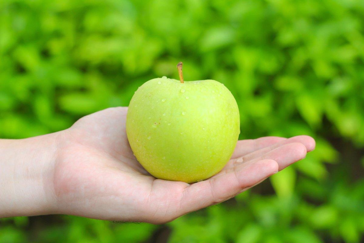 Картинки яблоко и руки