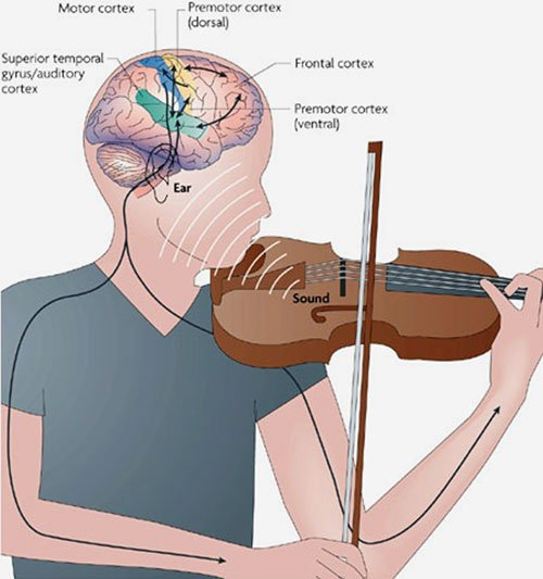 Image result for Studying Music Boosts Brain Development in Young Children