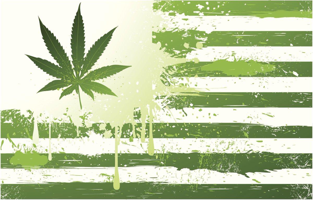 Risultati immagini per cannabis colorado senzatetto