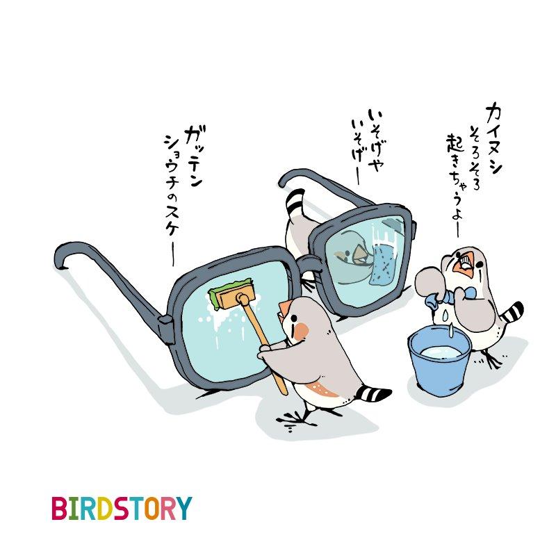 おはようございます。 本日は九月七日の語呂合わせでクリーナーの日との事。 私はド近眼なのでメガネ掃除は日課の一つです。 #クリーナーの日 #キンカチョウ #birds #finch