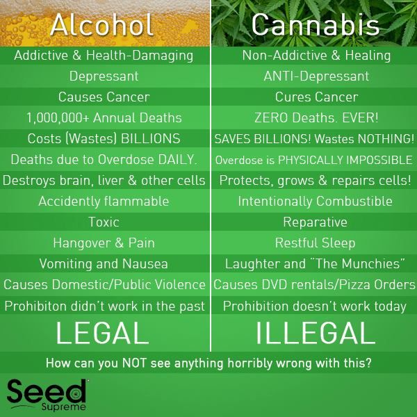 Image result for how beneficial is the weed on animal
