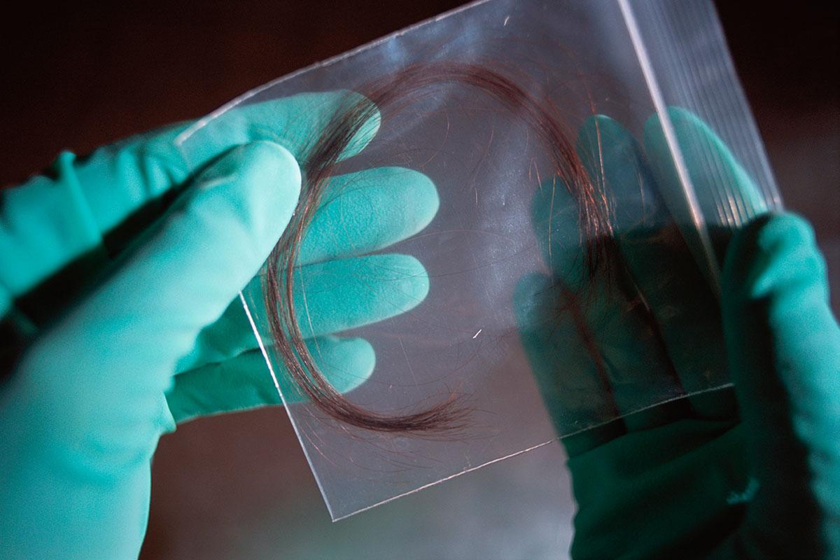 forenisc science 2 Forensic science degree forensic scientists locate, investigate, and evaluate evidence from crime scenes impartial investigation and observation is the key to identifying and prosecuting criminals, so forensic scientists must be fact-driven and analytical.