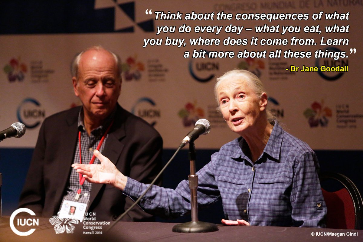 Dr Jane Goodall talks about accountability for sustainability at #IUCNcongress. @JaneGoodallInst https://t.co/eLl3DH0pZY