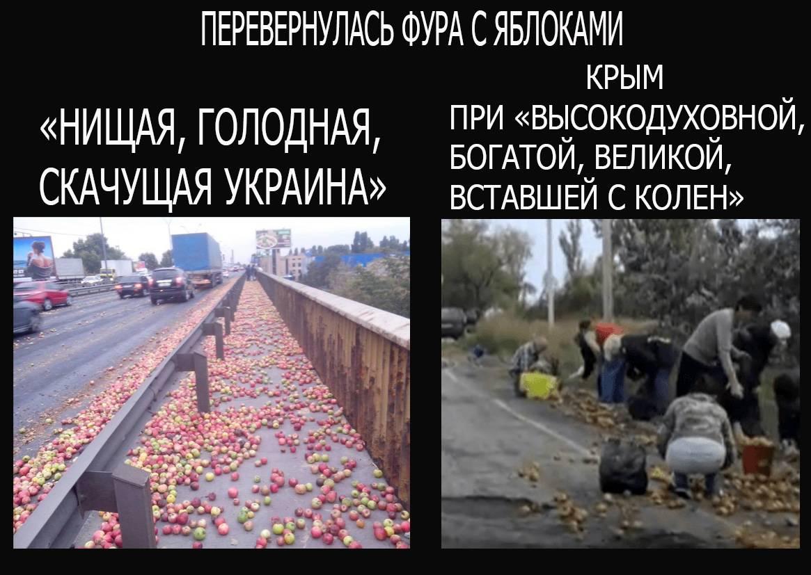 """Я не исключаю роли нардепа Скорика в проекте """"Новороссия"""", - Шкиряк - Цензор.НЕТ 4736"""