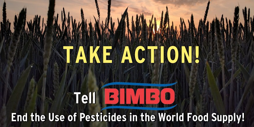 TAKE ACTION! Tell Bimbo: Take the lead in ending the use of #pesticides in the world #food supply.…https://t.co/Yv2FtahHh7 https://t.co/CFp1S1dsxF