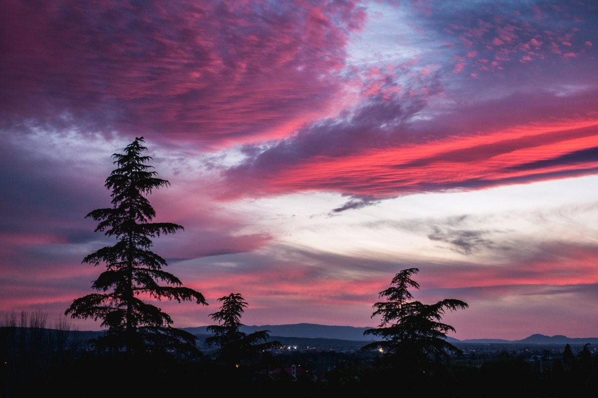 Hd Wallpapers On Twitter Dusk Trees Nature Sky Pink