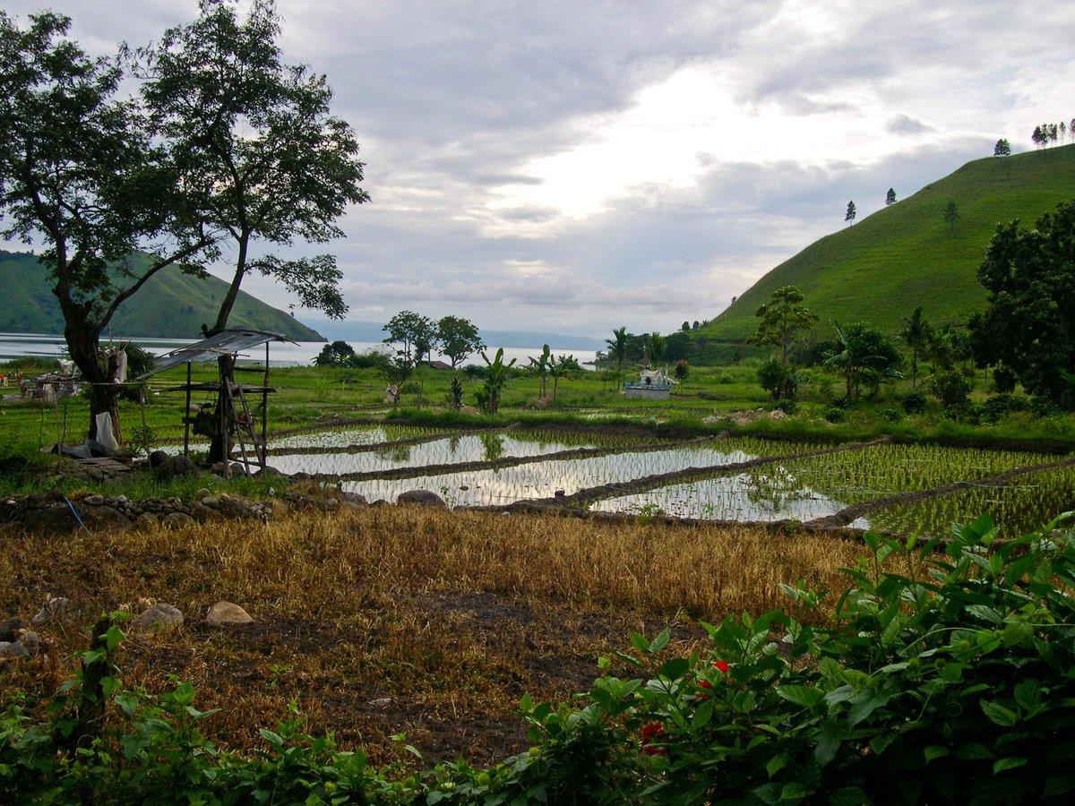 Danau Toba - Indonesia Sumber: flickr.com/photos/maggi_h… #danautoba #laketoba #Indonesia