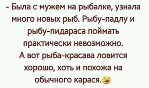 """""""КГГА нарисовала полосы для общественного транспорта, но они не работают"""", - активисты пикетировали Киевсовет с требованием решить проблему пробок - Цензор.НЕТ 1204"""