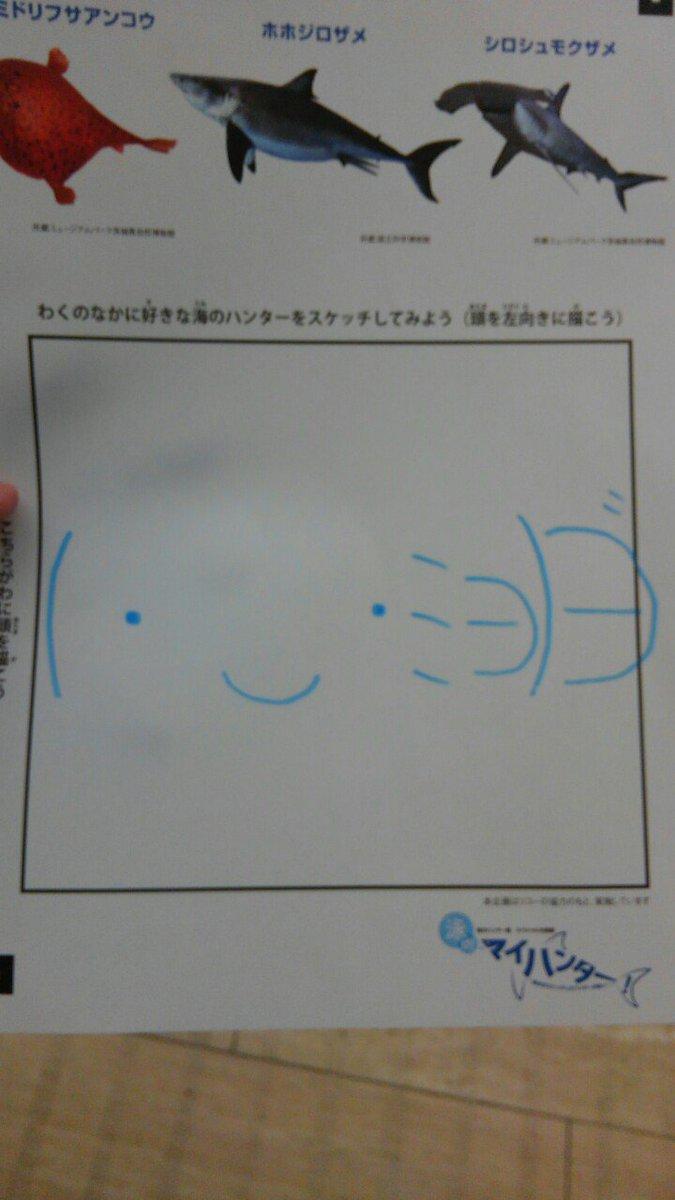 海のハンターだょ(・‿・ミэ)Э゛ https://t.co/4u6Kt4Eavu