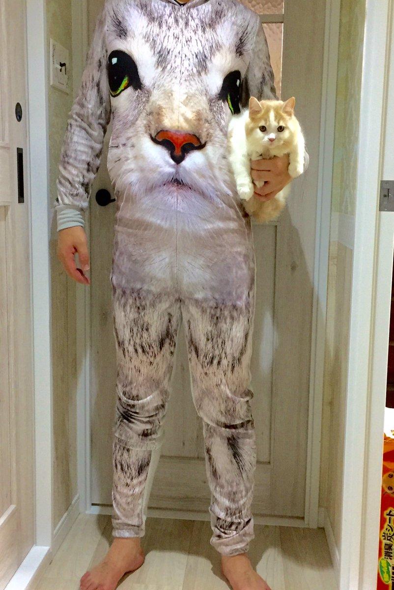 大のネコ好きにおススメのホームウェアがこれっ...化け物かよっwww