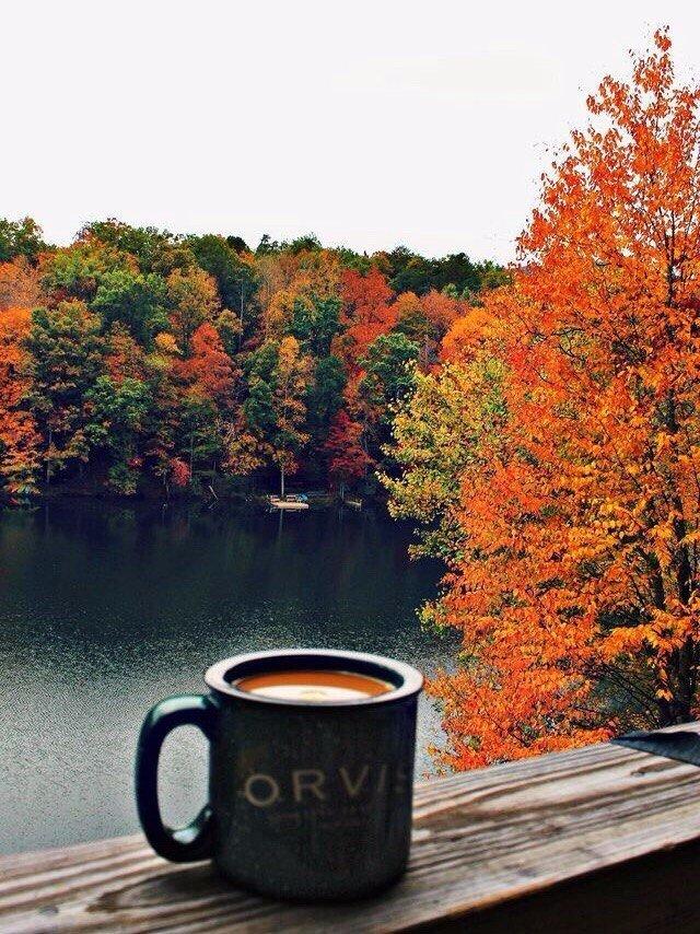Картинки беременными, кофе и осень красивые картинки