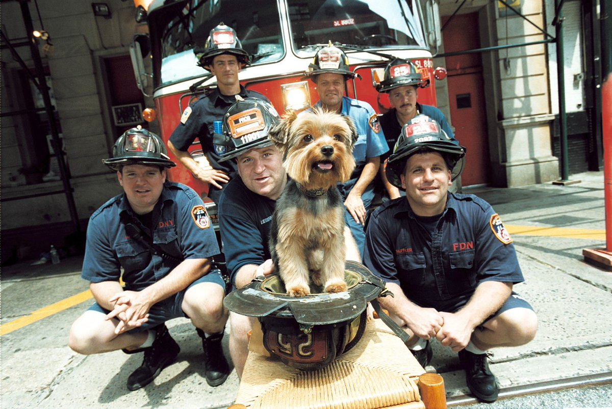 9 firefighter died on 9/11 from Ladder #25 #NYC. Here's my pup w/ remaining #heroes a year later. #NeverForget https://t.co/LvNc6TwotB