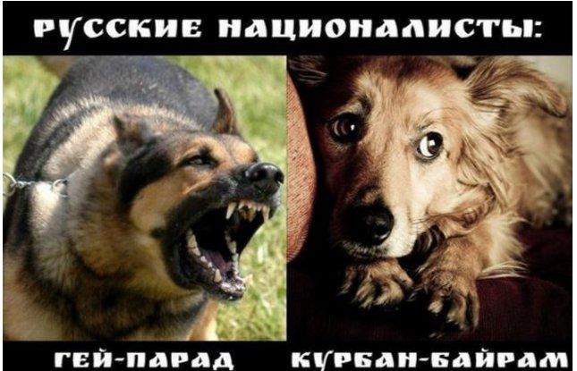 Движение паромов в Севастопольской бухте будет прекращено на неопределенный срок - Цензор.НЕТ 9802