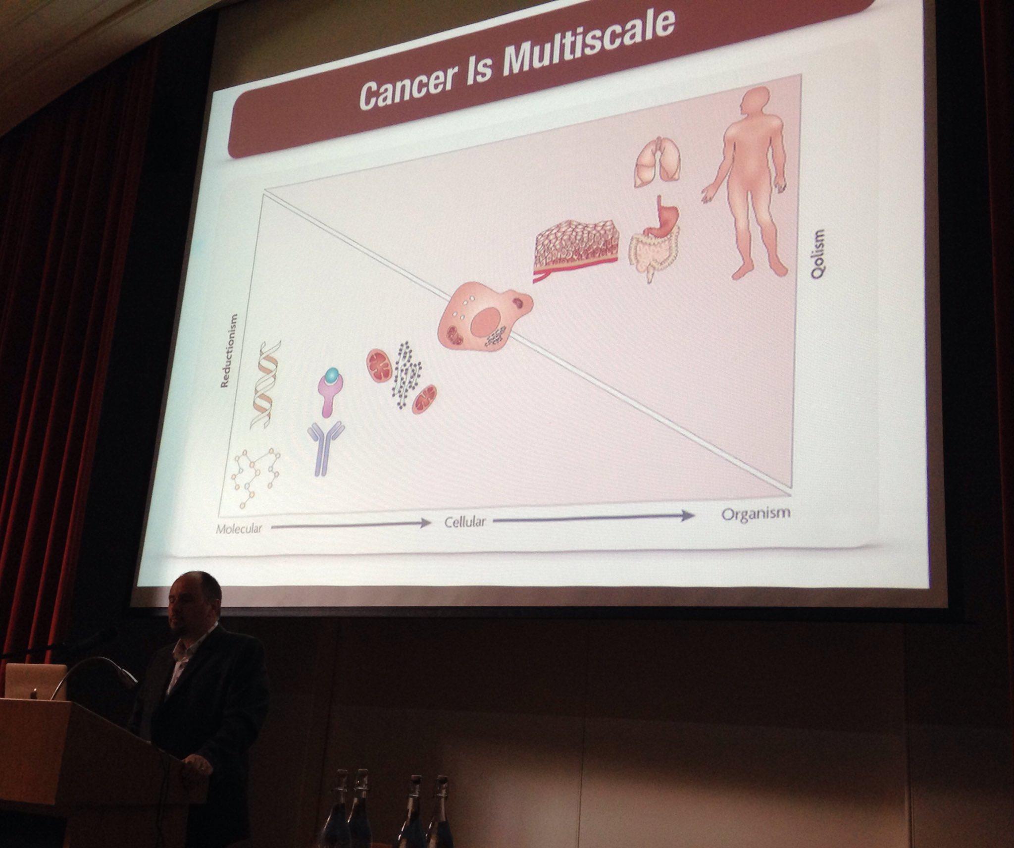 @ara_anderson describing multiscale nature of cancer data #sebmsc16 https://t.co/l0Z8Br5Lhg