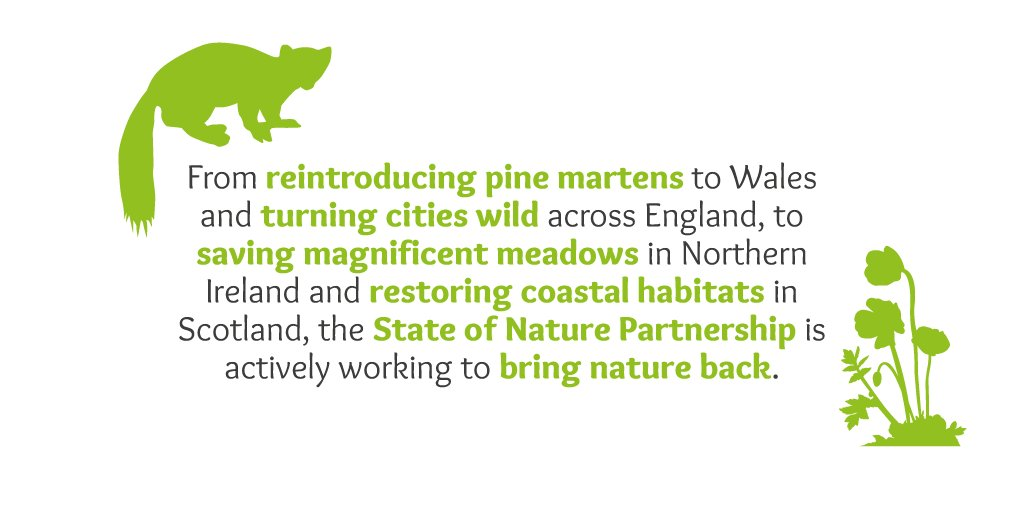 The #StateOfNature partnership is bringing back wildlife across the UK. Find out more: https://t.co/45OgeHRSrq https://t.co/065Zcxk8oo