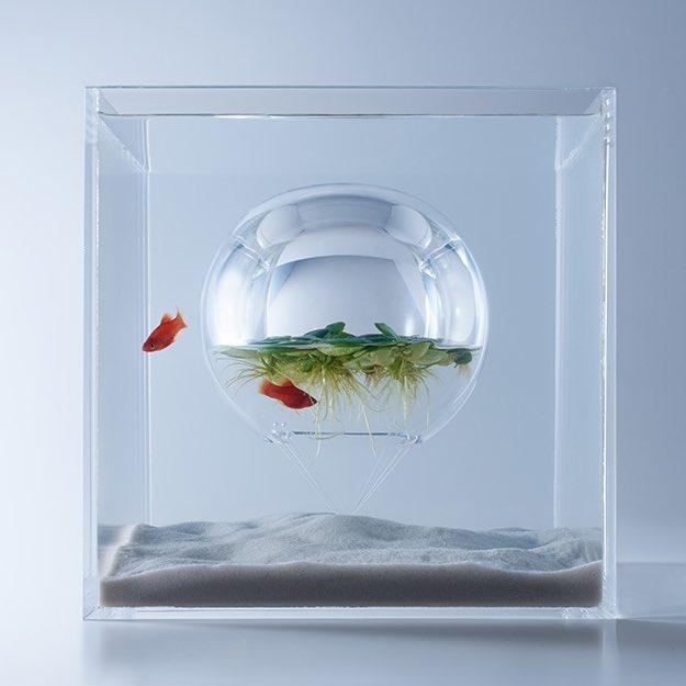 《waterscape》は水中に空気のある空間を作り浮草を浮かべる。魚は水草を食べることで生命を維持、植物は空気が水中内に滞留して温度が上がり温室効果で安定して育つ。生態環境について考察を重ね形にした水槽。目にも気持ちのいいデザイン