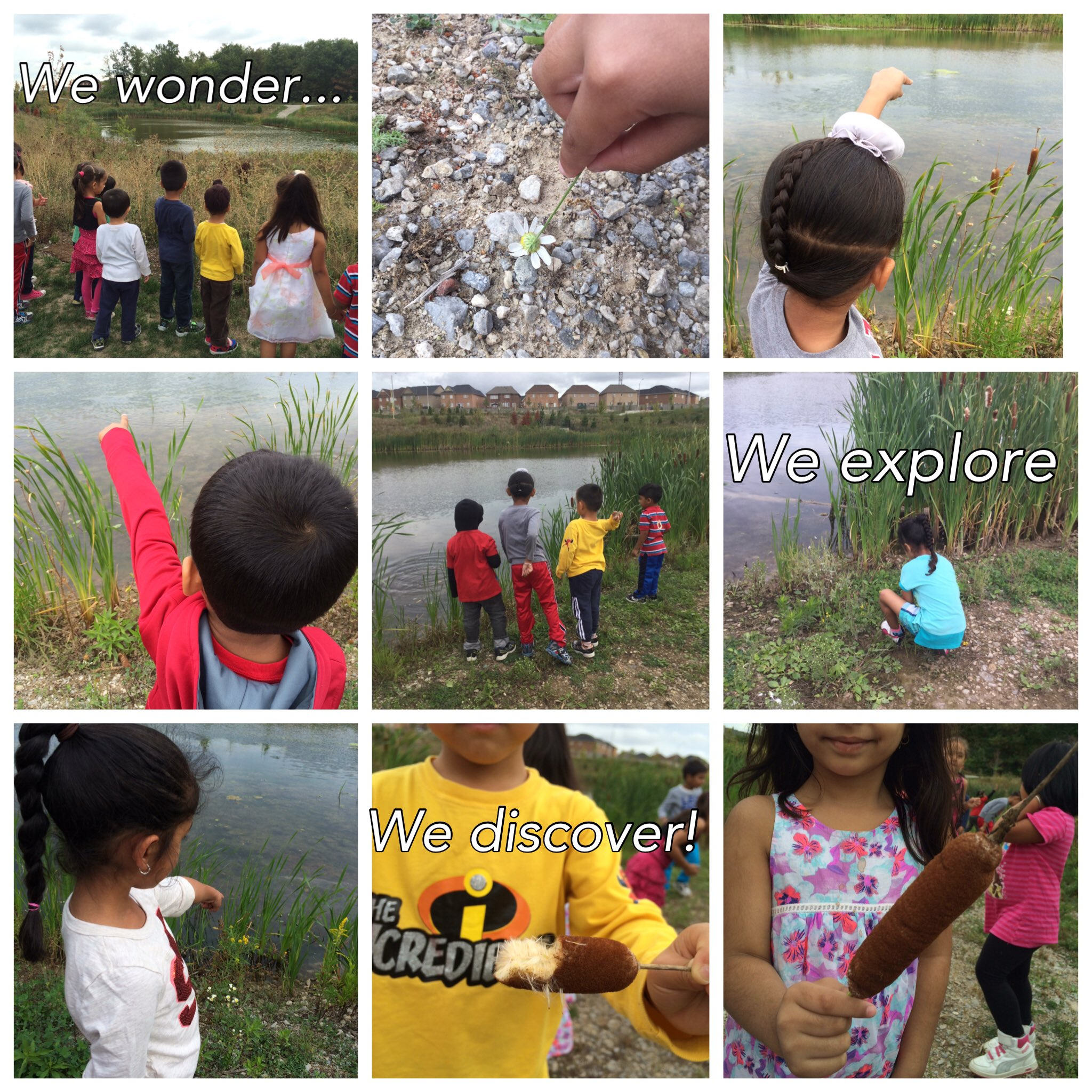 """Thumbnail for Twitter Chat on #EnviroEd """"Wandering Wonders - Exploring Your Community"""" 09/14/16"""